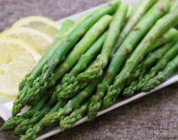 Makanan Seperti Asparagus  Ternyata dapat Membantu Penyebaran Kanker Payudara