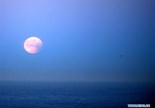 Lihat Penampakan Bluemoon Dari Seluruh Dunia di Sini!