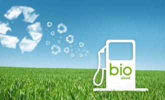 AS Meningkatkan Pajak Lebih Lanjut untuk Biodiesel dari Argentina dan Indonesia
