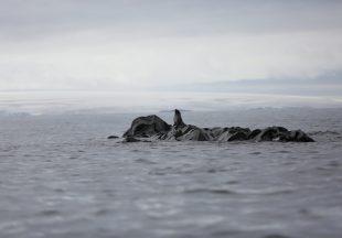 Pemandangan di Gleiser Antartika