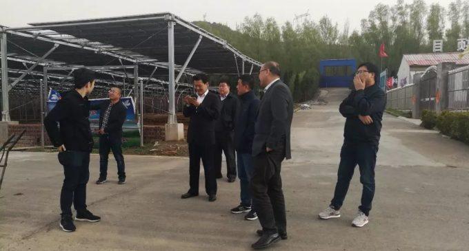 印尼三林集团  到访集团公司洽谈合作